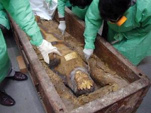 mummia persiana.2